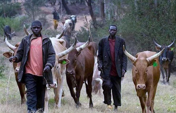 Nigeria: Violence Between Fulani Herdsmen And Farmers | Comboni Missionaries