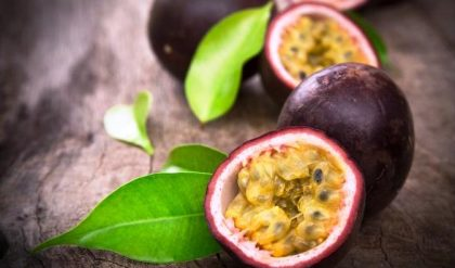 Plants & Herbs: Passion Fruit – Relevance To Human Life | Comboni Missionaries