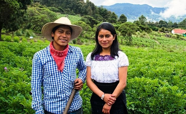 Guatemala: Community-led Forest Management | Comboni Missionaries