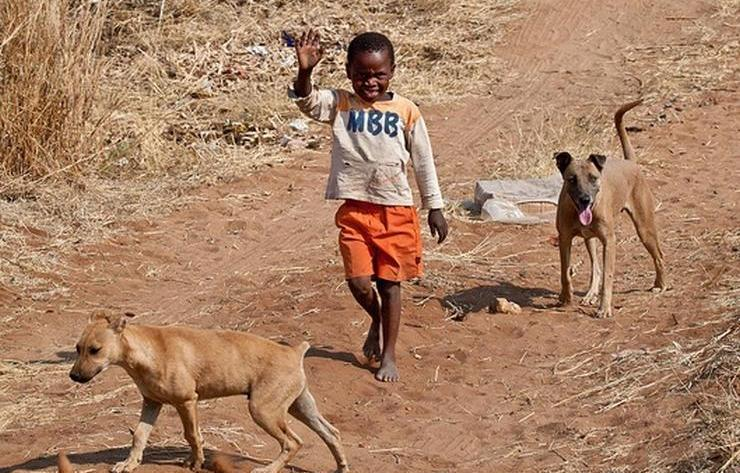 How The Dog Came To Live With Man | Comboni Missionaries